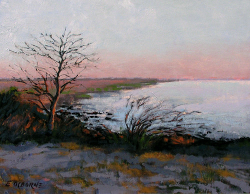 Jekyll Island, Marsh Side